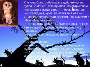 Улетела Сова, забралась в дуб, никуда из дупла не летит. Ночь пришла. На стар