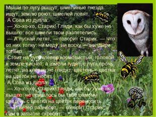 Мыши по лугу рыщут, шмелиные гнезда ищут, землю роют, шмелей ловят. А Сова и