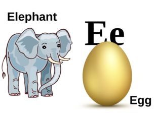 Ee Elephant Egg