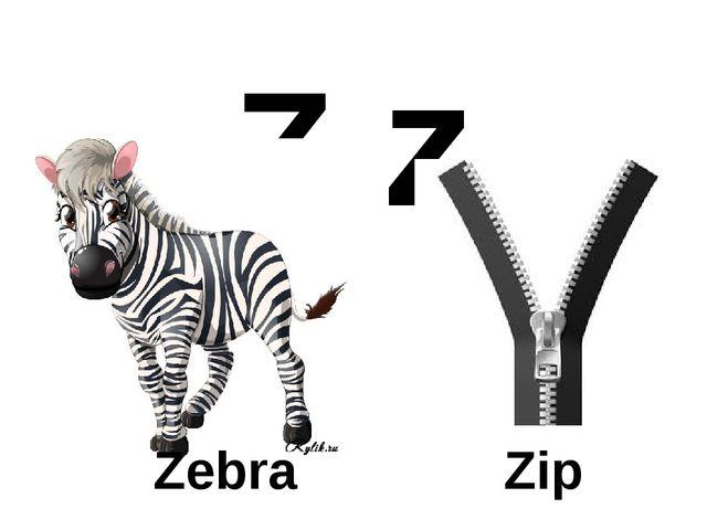 Z z Zebra Zip