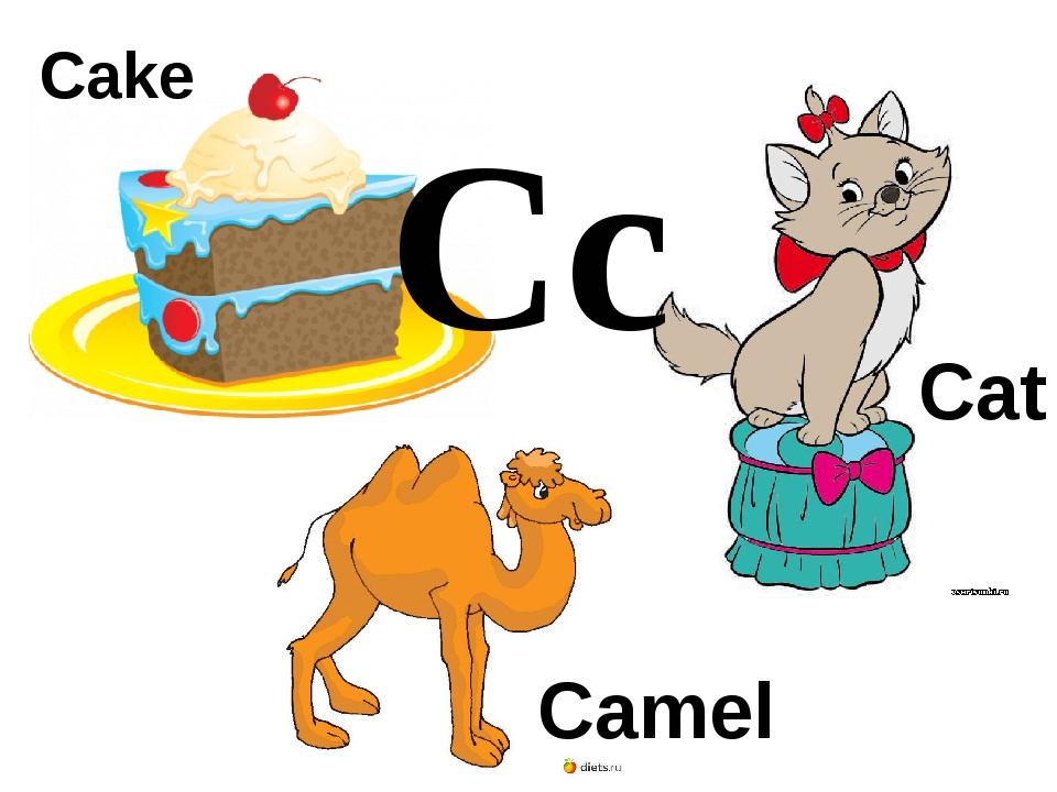 Cc Cake Cat Camel