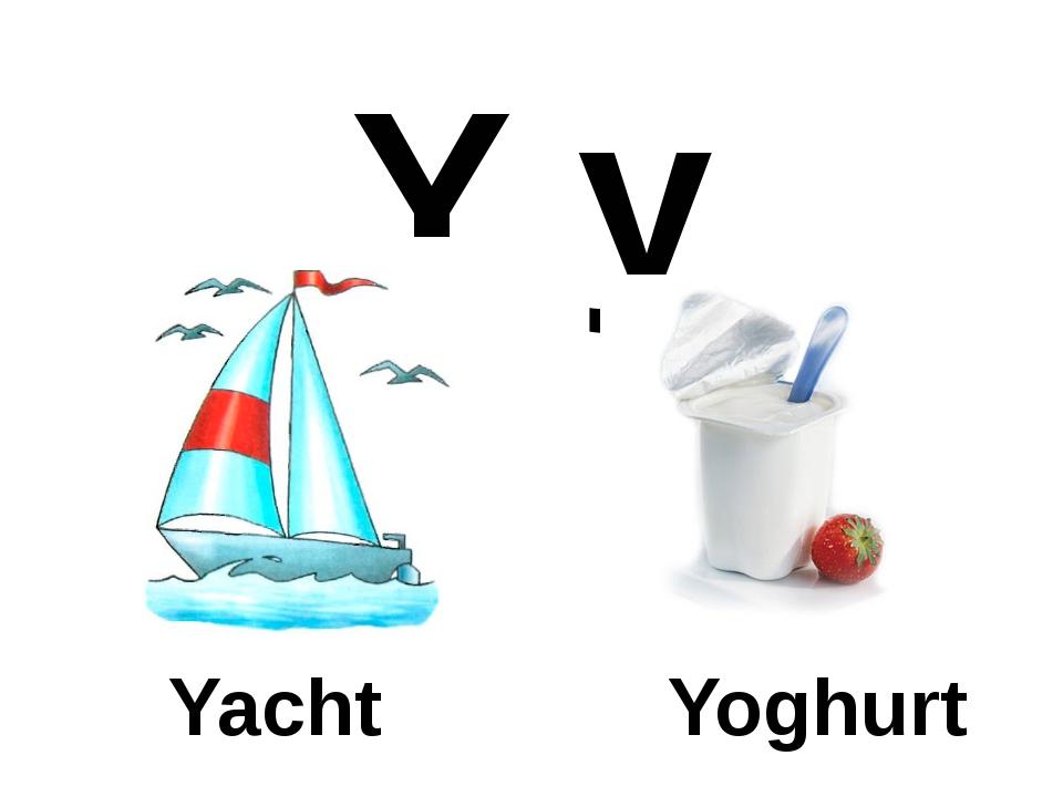 Y y Yacht Yoghurt