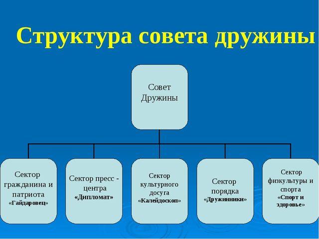 Структура совета дружины