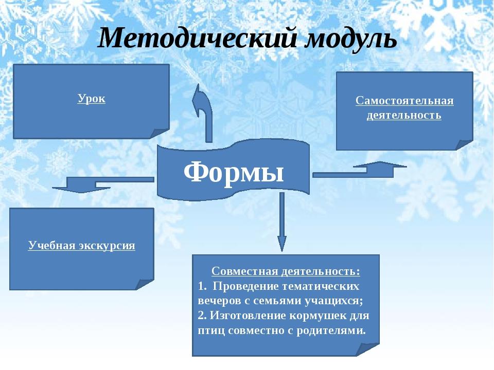 Методический модуль Формы Совместная деятельность: 1. Проведение тематических...