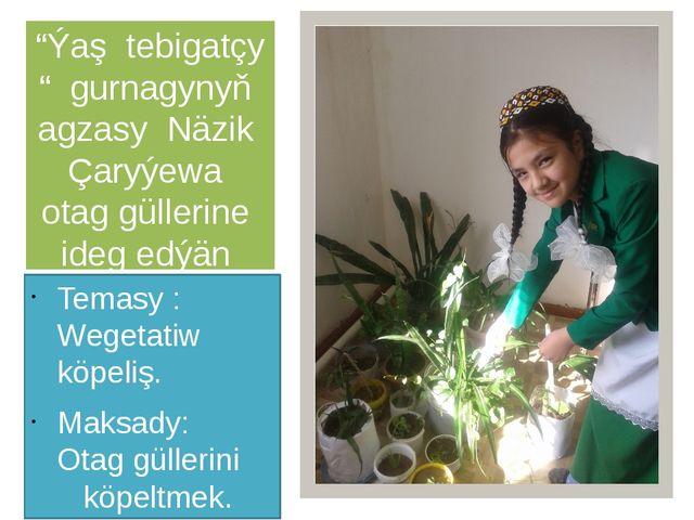 """""""Ýaş tebigatçy """" gurnagynyň agzasy Näzik Çaryýewa otag güllerine ideg edýän m..."""