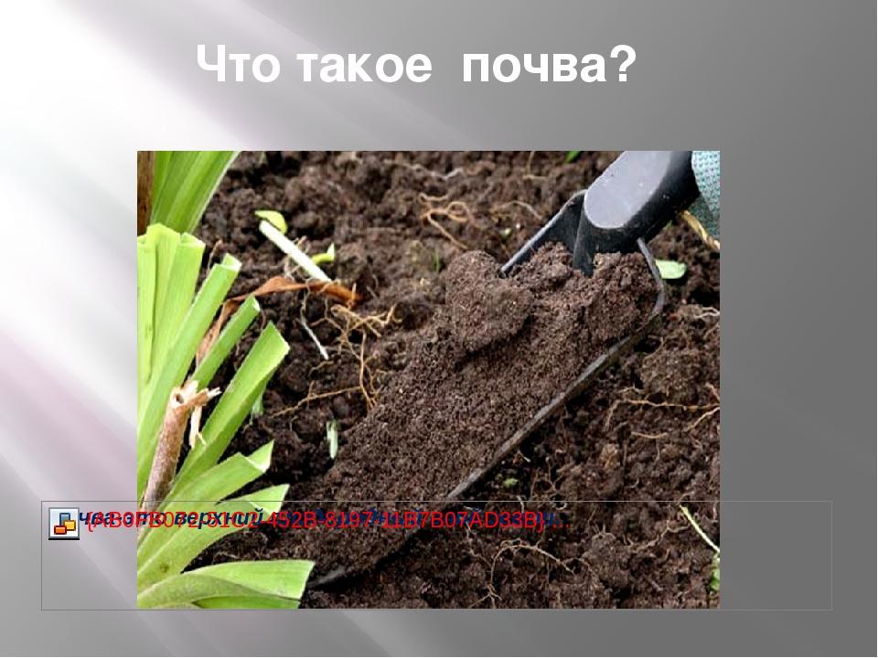 Что такое почва?