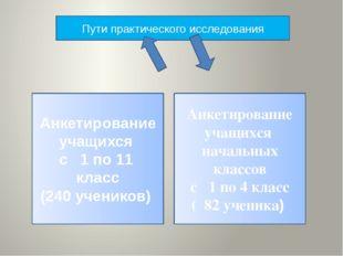 Пути практического исследования Анкетирование учащихся с 1 по 11 класс (240 у