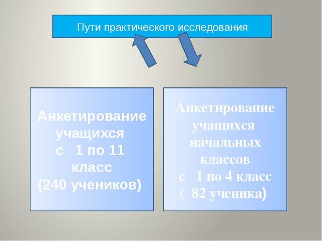 Пути практического исследования Анкетирование учащихся с 1 по 11 класс (240 у...