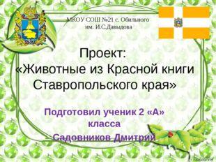 Проект: «Животные из Красной книги Ставропольского края» МКОУ СОШ №21 с. Обил