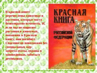 В красной книге перечислены животные и растения, которые могут безвозвратно и