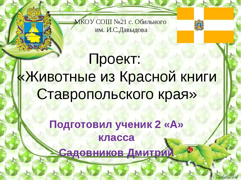Проект: «Животные из Красной книги Ставропольского края» МКОУ СОШ №21 с. Обил...