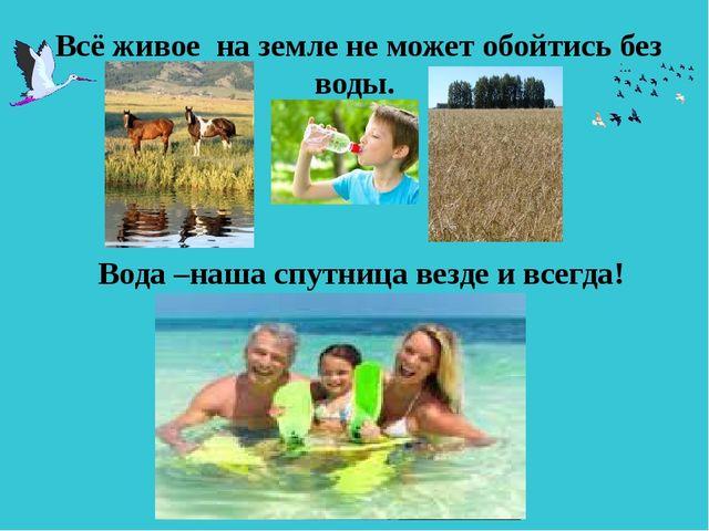 Всё живое на земле не может обойтись без воды. Вода –наша спутница везде и в...