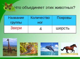 Что объединяет этих животных? 4 шерсть