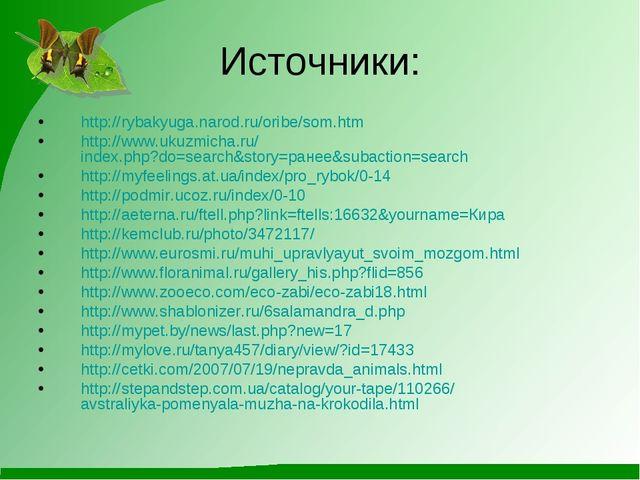 Источники: http://rybakyuga.narod.ru/oribe/som.htm http://www.ukuzmicha.ru/in...