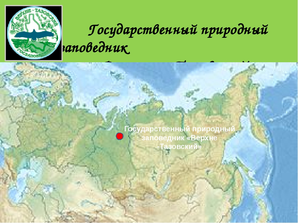 Государственный природный заповедник «Верхне – Тазовский» Государственный при...