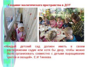 Создание экологического пространства в ДОУ «Каждый детский сад должен иметь в