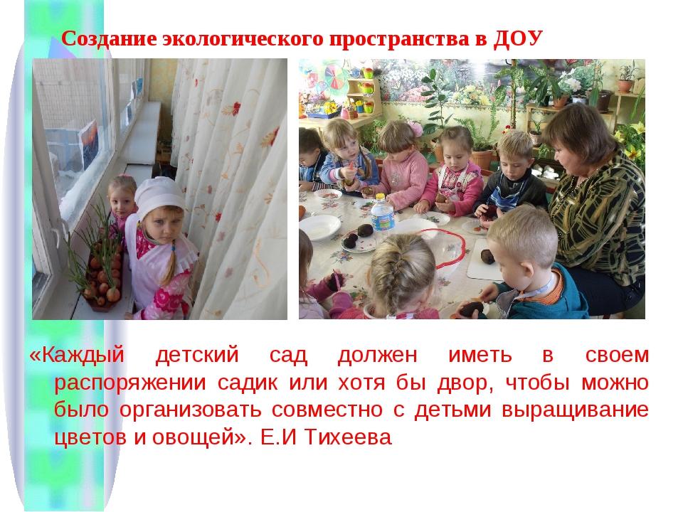Создание экологического пространства в ДОУ «Каждый детский сад должен иметь в...