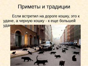 Приметы и традиции Если встретил на дороге кошку, это к удаче, а черную кош