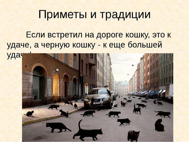 Приметы и традиции Если встретил на дороге кошку, это к удаче, а черную кош...