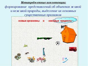 Метапредметные компетенции: формирование представлений об объектах живой и не