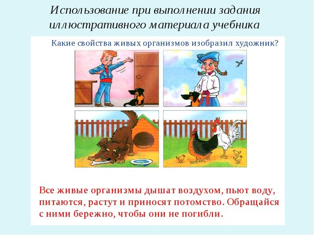 Использование при выполнении задания иллюстративного материала учебника