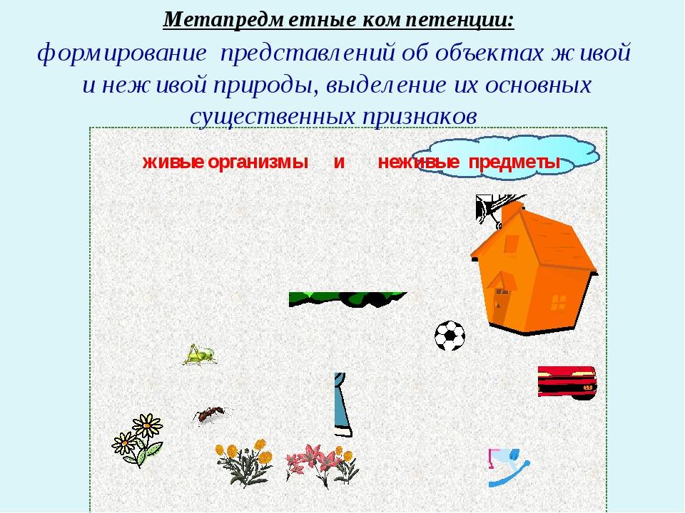 Метапредметные компетенции: формирование представлений об объектах живой и не...