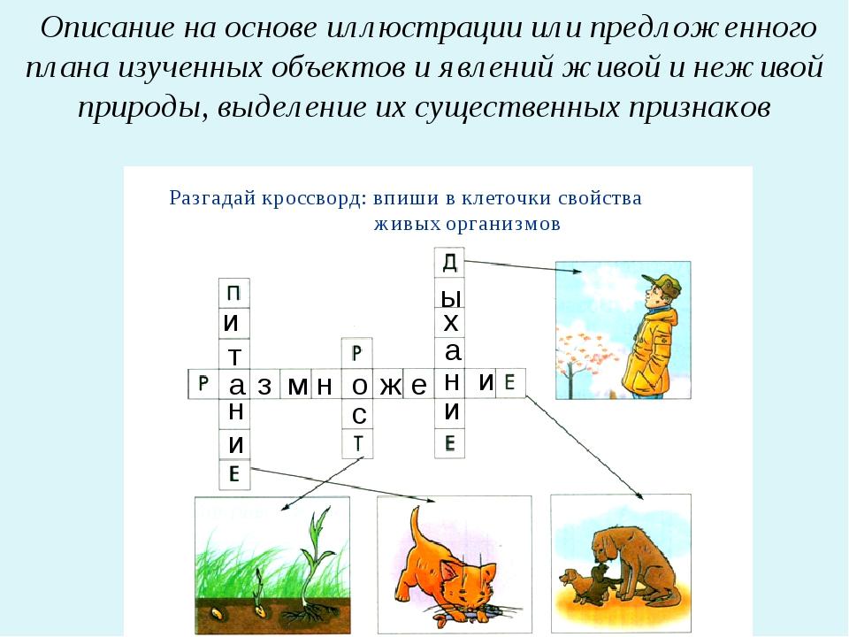 Описание на основе иллюстрации или предложенного плана изученных объектов и...
