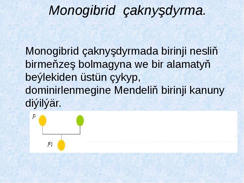Monogibrid çaknyşdyrma. Monogibrid çaknyşdyrmada birinji nesliň birmeňzeş bol...