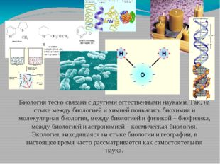 Биология тесно связана с другими естественными науками. Так, на стыке между б