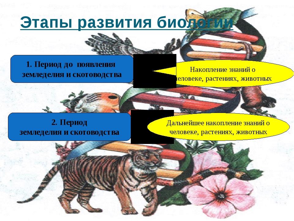 Этапы развития биологии 1. Период до появления земледелия и скотоводства Нако...