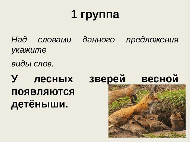1 группа Над словами данного предложения укажите виды слов. У лесных зверей в...