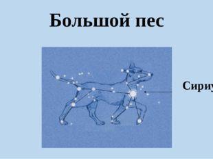Большой пес Сириус