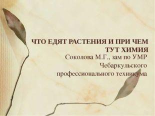 Соколова М.Г., зам по УМР Чебаркульского профессионального техникума ЧТО ЕДЯТ
