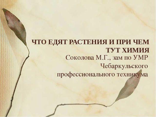 Соколова М.Г., зам по УМР Чебаркульского профессионального техникума ЧТО ЕДЯТ...
