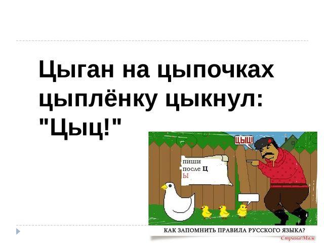 """Цыган на цыпочках цыплёнку цыкнул: """"Цыц!"""""""