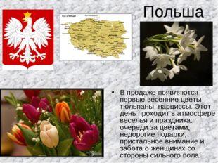 Польша В продаже появляются первые весенние цветы – тюльпаны, нарциссы. Этот