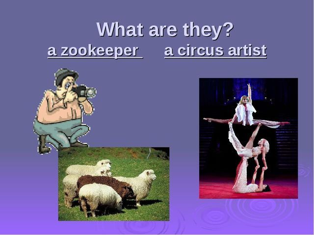 What are they? a zookeeper a circus artist