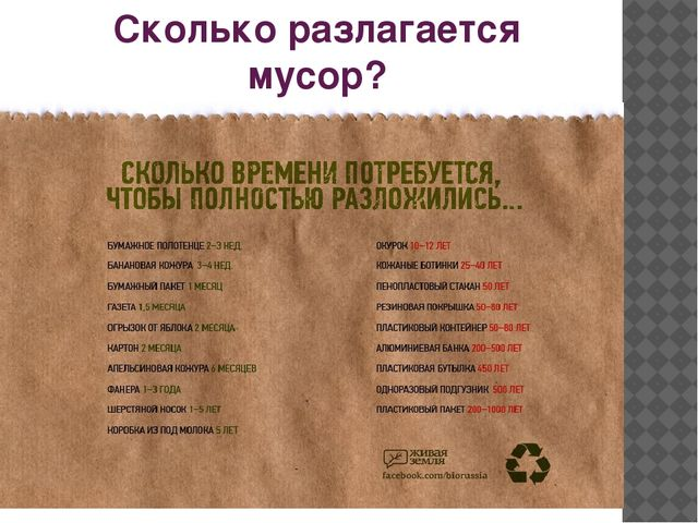 Сколько разлагается мусор?