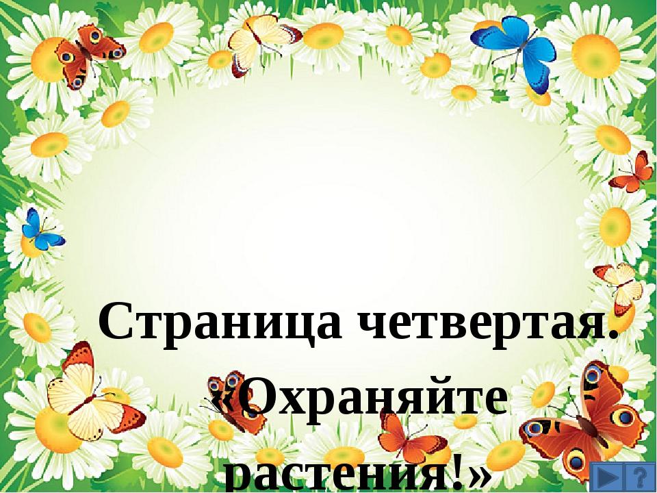 Страница четвертая. «Охраняйте растения!»