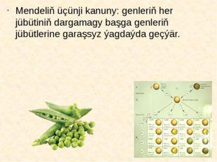 Mendeliň üçünji kanuny: genleriň her jübütiniň dargamagy başga genleriň jübüt
