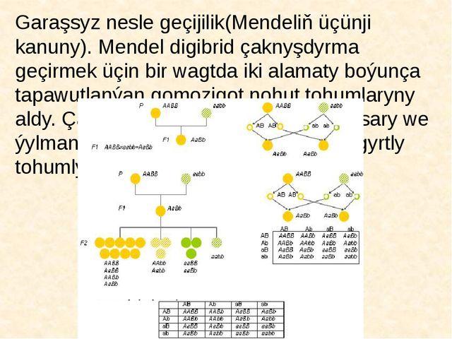 Garaşsyz nesle geçijilik(Mendeliň üçünji kanuny). Mendel digibrid çaknyşdyrma...