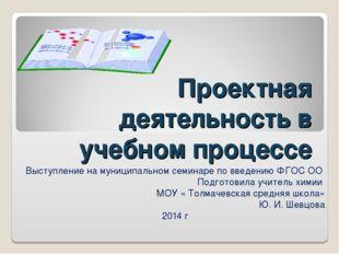 Проектная деятельность в учебном процессе Выступление на муниципальном семина