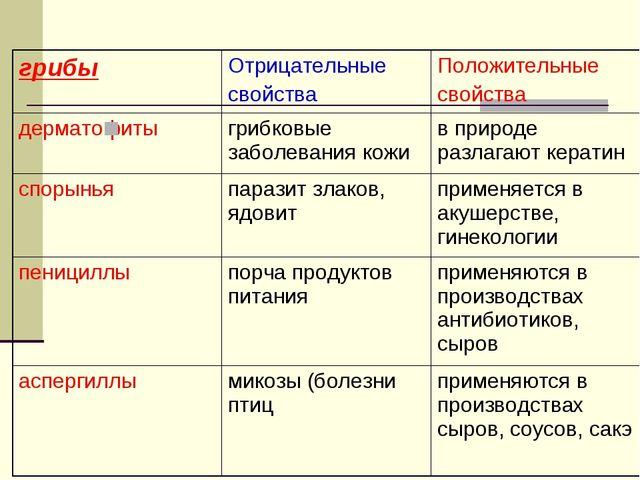 грибыОтрицательные свойстваПоложительные свойства дерматофиты грибковые з...