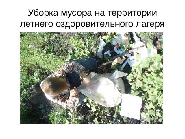 Уборка мусора на территории летнего оздоровительного лагеря «Радуга»