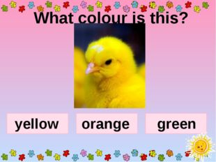 What colour is this? yellow orange green