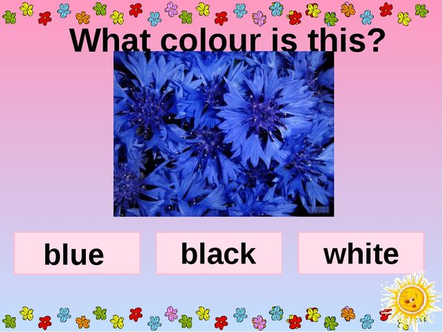 What colour is this? blue black white