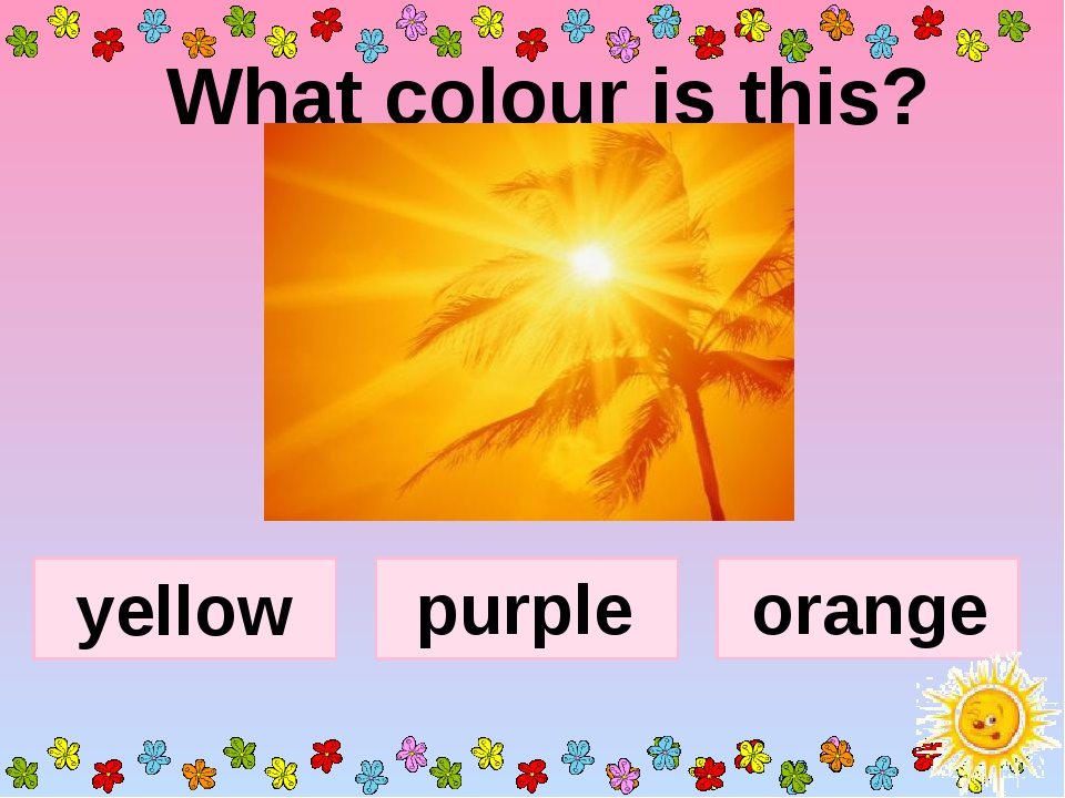 What colour is this? yellow purple orange