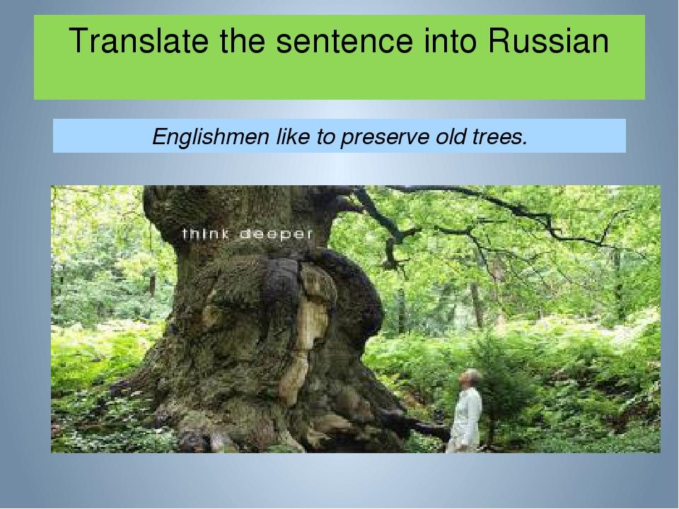 Translate the sentence into Russian Englishmen like to preserve old trees.
