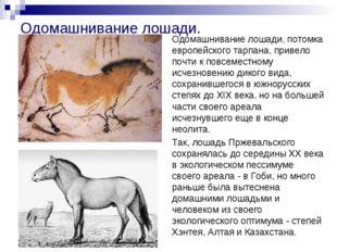 Одомашнивание лошади. Одомашнивание лошади, потомка европейского тарпана, при