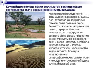 Крупнейшим экологическим результатом неолитического скотоводства стало возник